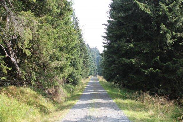 Måske lidt ensformig kilometer efter kilometer, men bestemt ikke uden charme.