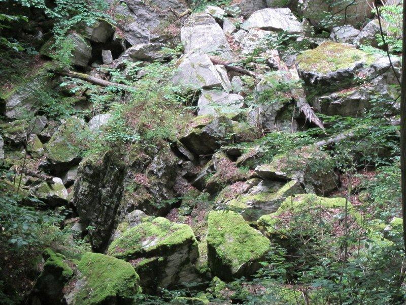 Under disse sten sivede Dinsterbach stille og roligt ned i undergrunden.