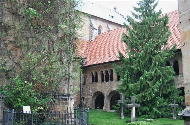 Det meste af rosen, der står op ad korrundingen i den gamle, smukke klosterhave i Hildesheim.