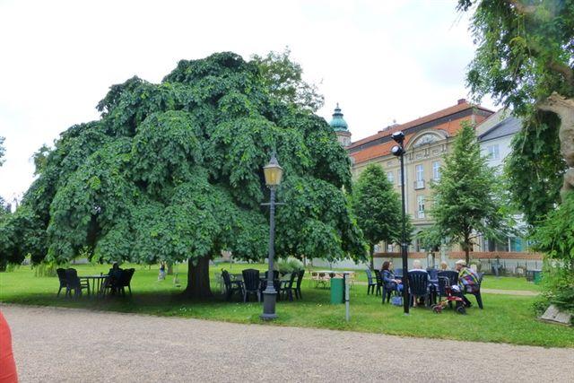 På kirkegården solgte menighedsrådet i Karlshamn kaffe og hjemmebag. Det var en god ide, billigt og det gik til et godt formål. Kaffen kunne sagtens måle sig med cafeteriakaffe. 05.07.2013.