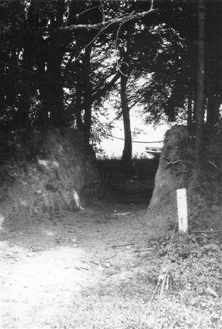 Forbindelsen Braanderup - Øster Terp gik over flad mark. Kun ved Øster Terp fandtes denne anselige dæmningsrest. Ejeren havde senere gravet en markvej igennem. Det var her, der via banen lig einden optagelsen transporteredes en selvbinder via banen. Foto: SAG 1973.