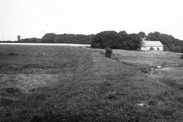 Ved Gåsbæk var banedæmningen temmelig tydelig. Den stopper dog hos naboen. Han havde efter 1920 fjernet den med skovl og trillebør. Man var vel dansk! Foto: SAG 1973.