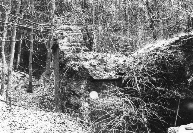 I 1973 besøgte jeg sammen med min far resterne af det sprængte batteri i Gammelskov. Det var jo trods alt ham, der havde sat det hele i gang. Retserne var svært overgroede og ikke til at fotografere ordentlig. Foto: BH 1973.