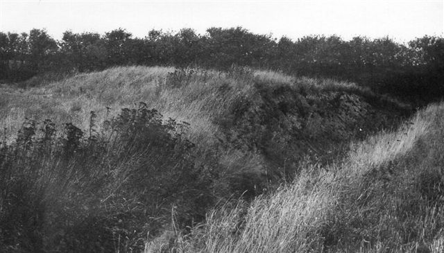 Allerede i 1972 var SAG og jeg på jagt efter banen mellem Døstrup og Branderup/Arrild efter tip fra lokale. Her ses en stor dæmning, der var banen over Bredeå. det meste af dæmningen var borte, og her var gravet en grøft tværs gennem dæmningen. Af broen ove råen var der ingen spor, men åen var også senere kanaliseret og forlagt. Foto: SAG 1972.