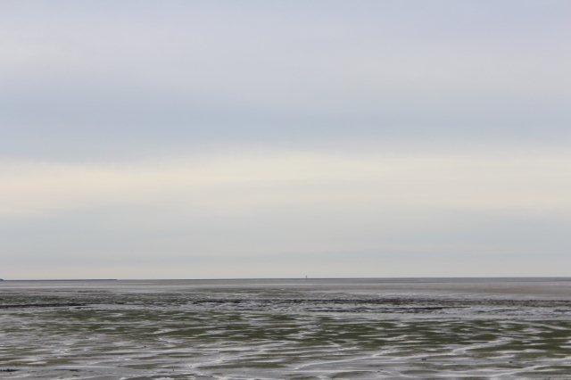 Fra Pellworm kan man skimte den lille Hallig Norderoog, der i dag kun har en pælebygning til skibbrudne og vildfarne vadehavsvandrere. Tilflugtstårnen kan nu næppe ses i den opløsning billeder har.