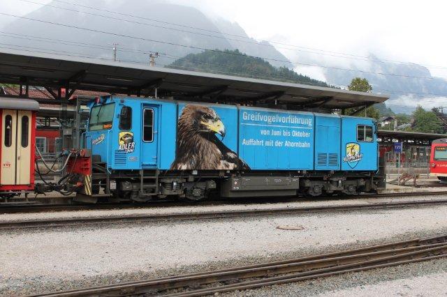 Den blå D 16 kørte også den dag. Nummereringen tyder på, at der også findes en D 14, men den må have været inde. Turistforeningen i Mayrhofen havde fundet ud af, at der også var penge i ørne, så de havde ofret en reklame på ørnebesigtigelse. Generelt brugtes ørnen i området i et bedre miljøs tjeneste. Jenbach 01.09.2013.