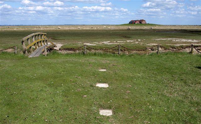 Det er nu næsten hundrede år siden, man sidst har benyttet kirkegården her på Nordstrandischmoor. Det lavtstående grundvand hævede kisterne lige så hurtigt, som man begravede. Stormfloderne gjorde, at blomster og opretstående gravsten var omsonst. Foto Asger Christiansen 2011. Desværre kan jeg ikek finde mine egne fotos.