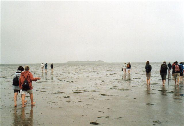 Vadehavsvandringer sker af magelige grunde normalt på sandvader. Her er en gruppe på vej til Oland i 2005. Gå ikke på sådanne ture uden fører. En sådan findes på nettet, koster så lidt, og så får du som regel bådbefordring med retur, og fra båden til din hensatte bil også en bus. Af gode grunde sejler båden helt andre steder end, hvor du stillede din bil gik ud. Går du alligevel ud i Vadehavet, så vær sikke på, at du ved, hvornår det bliver højvande og gå kun ved lavvande. Netop på denne tur lagde en dis sig pludselig, og så er det om at have kompas med og kende retningen til Oland eller til Jylland.