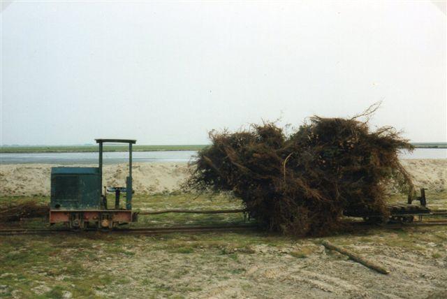 Ved Friedrichkoog også i Ditmarsken byggedes faskiner i 1983. Materialet hertil kørtes ud med tog. Endnu i dette årtusinde har jeg set en sådan bane i marsken ved Weser syd fo Cuxhaven. man kan simpelthen ikke sende en moderne entreprenørmaskine ud i marken - ikke hvis man skal bruge den igen bagefter. Lokomotivet vejer også kun omkring 1 ton.