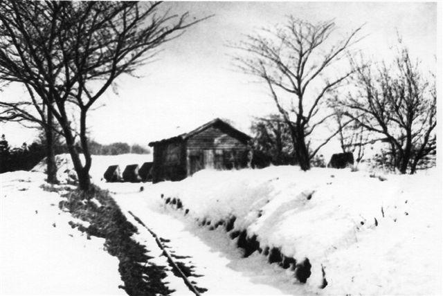 Et foto fra 1961. Sporet i forgrunden fører til Molbograven. Billedet er lånt på Viby Bibliotek.
