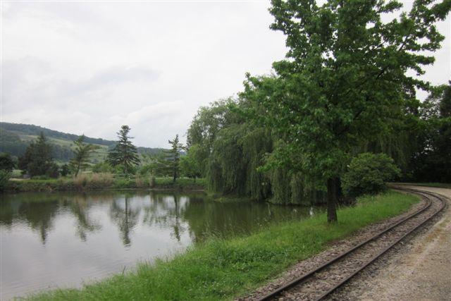 Et af planteskolens smukke steder. Parken kaldtes det på en plan over planteskolen. Vandet brugtes til vanding i tørre perioder.