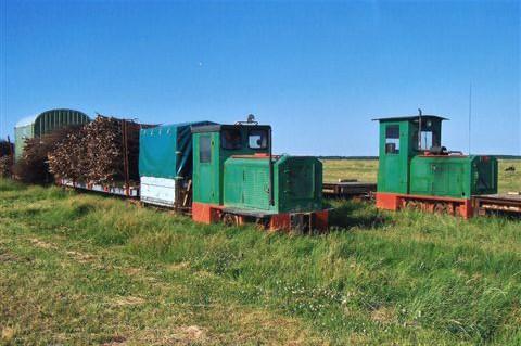 Selv om der ikke er meget at se i marsken og på vaderne, kan man måske undre sig over badegæsterne, og så kan man jo altid finde en industribane! Her ved Spieka Neufeld mellem Cuxhaven og Bremerhaven havde man 2010 for tredje år i træk udlagt en kystbeskyttelsesbane. Tidligere havde der været tre lokomotiver. Her ses til venstre formentlig nr. 2, Diema 2576/1962 og Diema 2599/ 1963. Ejeren er Forbundslandet Nedersaksens kystbeskyttelses organisation, men hvad den nøjagtigt hed det år, blev jeg ikke klar over. Navnet skifter ofte, og ejeren er ikke, som det ses, påmalet lokomotiverne.