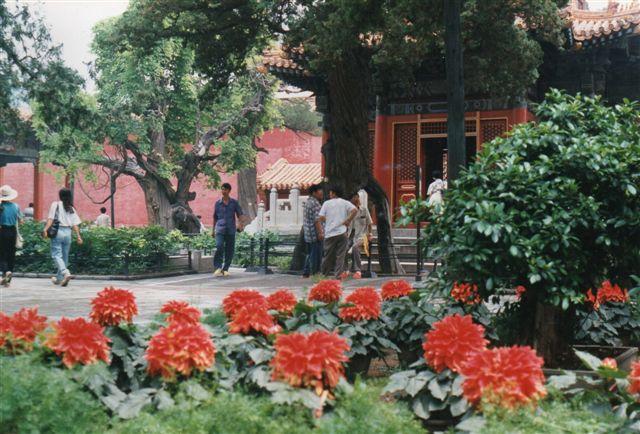 Indtryk fra kejserens private bolig og han have i Den forbudte By 1995. Her fandt ikke så mange turister ud, så det var til at fotografere.