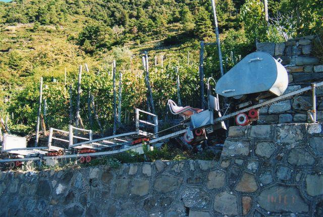 Enskinnebane til druetransporter. Disse baner er forholdsvis nye og anlægges stadig. De klarer en stigning på mere end 60 %, så de muliggør opdyrkning af bjergsider, der hidtil har været for stejle. Da sparer vinplukkerne for mange skridt op og ned. Desuden benyttes de på sætere, hvor mælken kan køres ned daglig, så man ikke behøver lave ost af al sætermælken. Banen her i Corniglia var ikke til persontransport, men banerne kunne fås til transport af passagerer også. Stigninger på veje vises som forhold som f. eks. 1 : 6. Allerede en stigning på 45 % bliver i den terminologi 1 : 1, men disse enskinnebaner var først konkurrencedygtige ved stigninger på over 50 %.