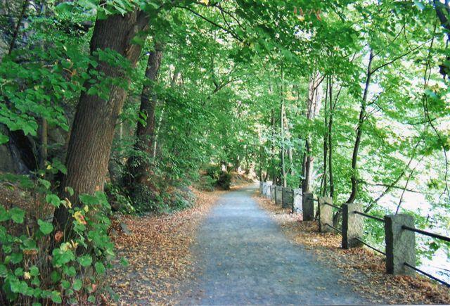 Stien Langs Bode gennem Bodeslugten ved Balnkenburg i Harzen.