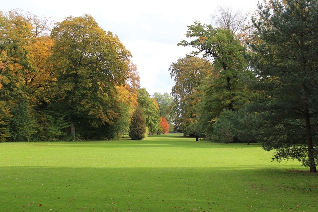 Plejet natur. Også den kan være smuk, Her skyldes farverne nu nok efteråret. Rigtig natur er det ikke. Fuglene, selv hejren, du ikke hjemme ved mig kommer tætte på en 200 meter, før den letter, spiser her af hånden! Vi er i Frederiksberg Have.