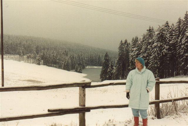 Fra vor gåtur mellem Zum Auerhahn og Hahnenklee 1989.