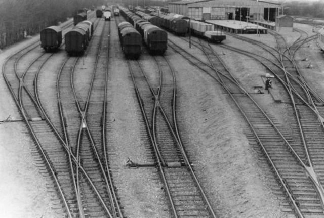 Strækningsristen med flere tog sorteret i strækningsorden. Til højre Omladehallen, der allerede er lukket, men fungerer for opbevaring af museumsmateriel. Foto: Hans Henrik Frøkjær 1969.