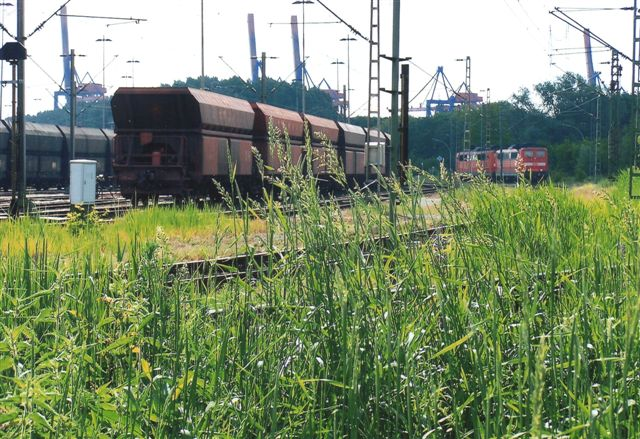 Først i 2009 tænkte jeg på at fotografere DB og malmtogene, og det blev kun til dette ene foto af to DB-lokomotivet holdende helt ude ved Autohof Waltershof, der er placeret lige under motorvejsbroen syd for Elbtunnelen. 2009