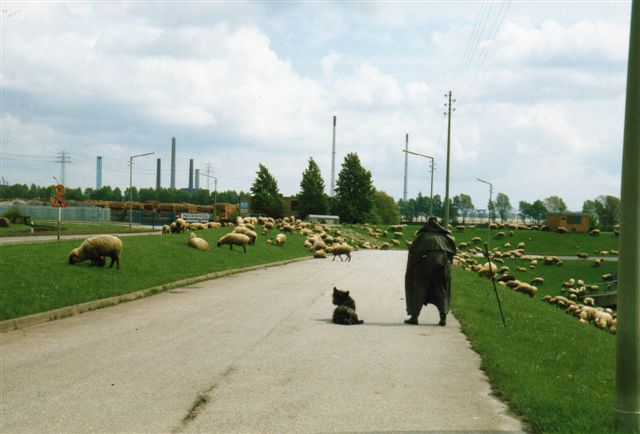 En hyrde lader sin hjord afgræsse områderne omkring Hansaport og navnlig den nedlagte landsby Altenwerder, hvor de rømmede arealer blot lå og ventede på anlæg af en containerhavn. Han ville ikke fotograferes, men senere så jeg på en fotoudstilling på et kunstmuseum i Duisburg, at han eller en kollega var blevet det. At forklare baggrunden vil føre for vidt. Et særligt indlæg tager sig af den sag. Se: Verden. Hyrder