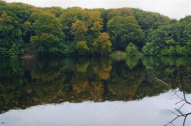 Herthasøen, hvor der ofredes unge piger. Hethaborgen lå bag søen mellem træerne.