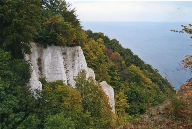 Udsigt fra Kongestolen på Rügens Klint. 117 meter. Flot, men Møens klint er altså mere hvid. Også oppe fra.
