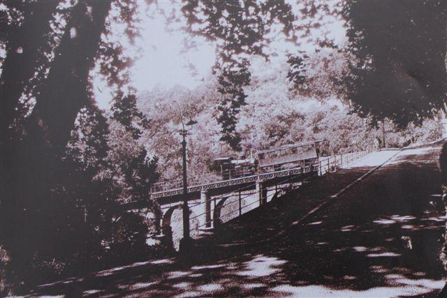Tog på broen ved Monte. Lokomotivet har kulkasse bagpå, kort vandkasse og lav dom, så det kan være schweizeren eller det hjemmelavede? Affoto af postkort uden data.