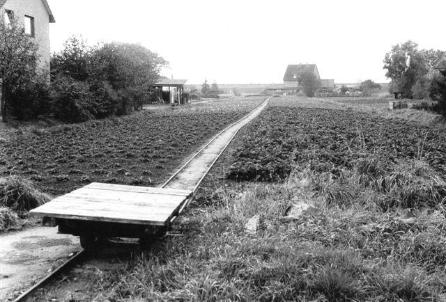 Bane på gartneriet Süderquerweg 285 , Howe. 500 mm bane. Her fornemmes, hvor smal parcellen er, og hvor lidt plads banen optog. Foto: Bent Hansen 1985.