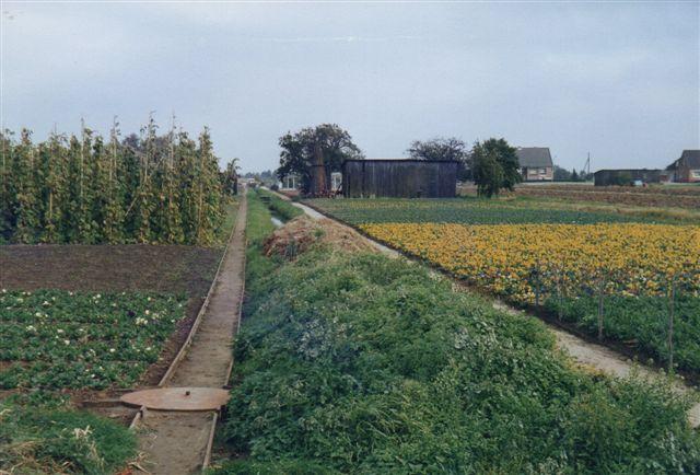 Banen her førte videre (bag fotografen) til et andet gartneri, og drejeskiven havde givet sporforbindelse til et tredje gartneri!