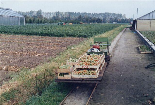 Toget var læsset med friske tomater.