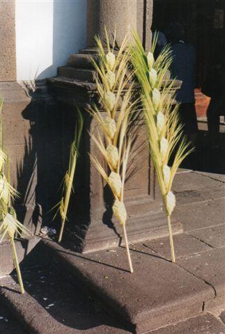 Uden for byens kirker stod der en dag palmeblade kunstfærdigt flettet på flere kunstfærdige måder. Vi studsede, men kom så i tanker om de forestående Palmesøndag, hvor indtoget i Jerusalem mindedes. Alle foto er fra 1999.