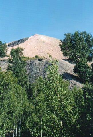 Fossiljægernes nu fredede og dermed tabte paraidis. Affaldsbjerget i Nyvång. 2011.