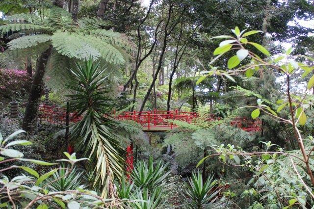 Montehaven i Monte oven over hovedbyen Fucchal på madeira havde blandt andet en kinesisk-japansk have. Nogle af træerne er dog forhistoriske bregnetræer, der er uddøde mange andre steder, men stadig vokser her