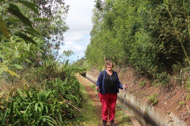 En levada er en kunstig vantilførsel fra Madeiras regnfulde nordlige tværs over øen til den mere regnfatte sydkyst, hvorfra det fordeltes til markerne her, hvor de fleste indbyggere bor.